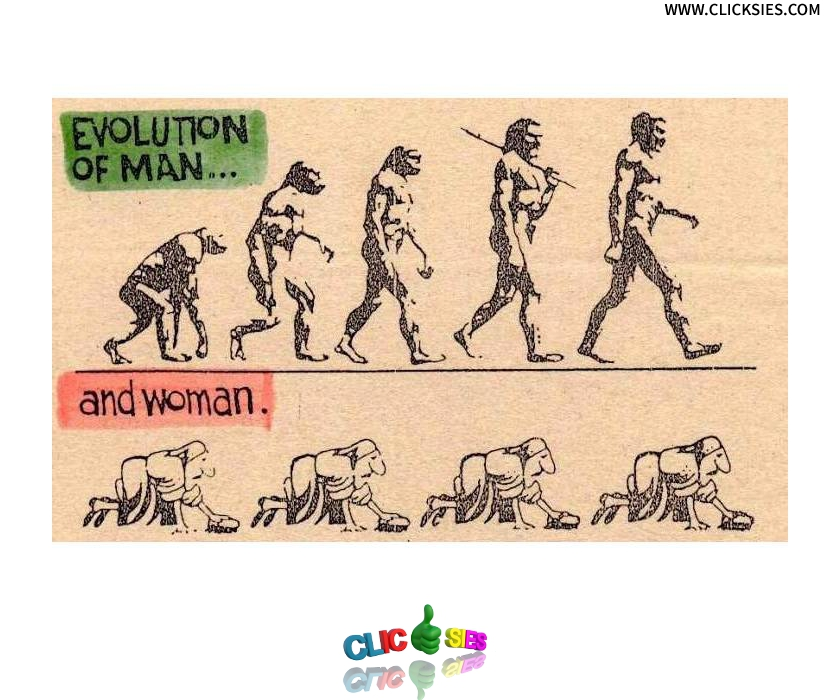 Difference between Evolution and Adaptation - www.clicksies.com