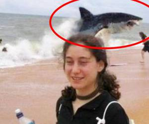 Unbelievable shark attack