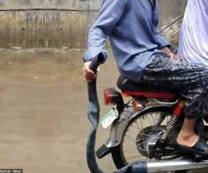 Don't underestimate the power of JUGAAD...