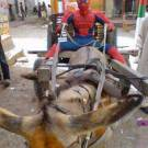 Spiderman (Indian Version)